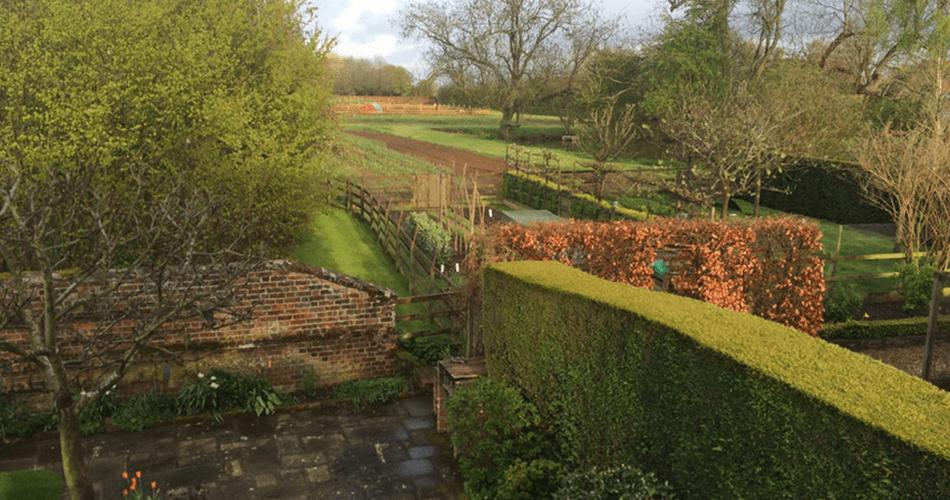 Cottage Garden   Structured Growth