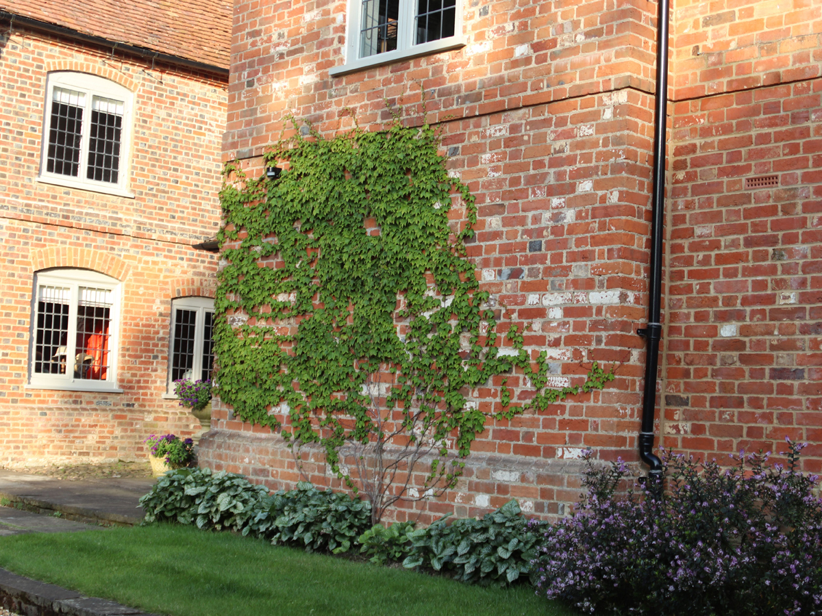 Old Rectory Garden   Structured Growth